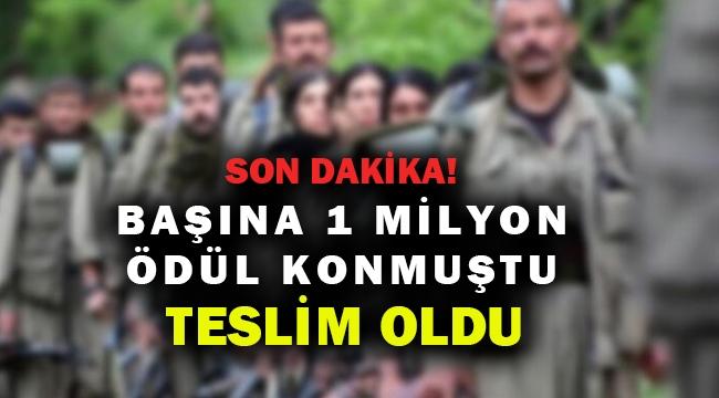 1 milyon ödüllü PKK'lı Hakkari'de teslim oldu...