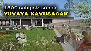 Büyükşehir'den can dostlar için 1.500 kapasiteli rehabilitasyon merkezi