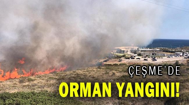 Çeşme'de orman yangını çıktı