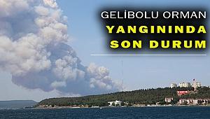 Gelibolu'daki orman yangını söndürüldü mü?