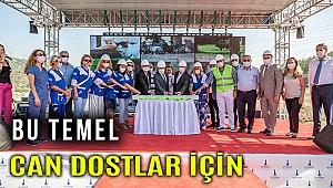 İzmir'de sokak hayvanları için yeni merkez kuruluyor