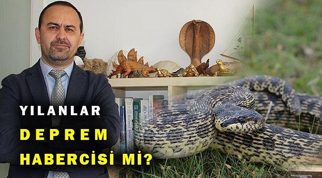 Prof. Dr. Ayaz: Yılanların sık görülmesinin deprem habercisi olduğu kanısı...
