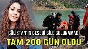 Tunceli'de kaybolan Gülistan Doku'dan 200 gündür iz yok!