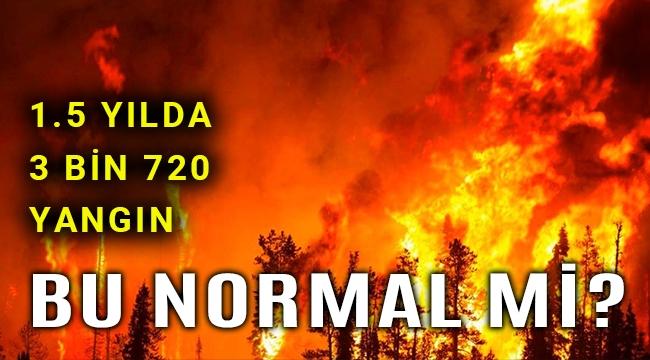 1.5yılda tam 3 bin 720 orman yangını!