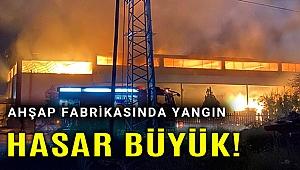 Ahşap fabrikası yangında büyük hasar gördü