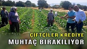 CHP'li Polat: Çiftçi kredi ile yaşamaya mahkum!