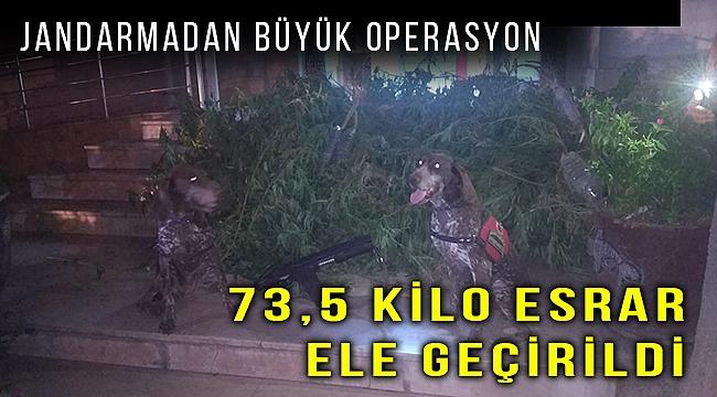 İzmir'de 73,5 kilogram esrar ile 392 kök Hint keneviri ele geçirildi