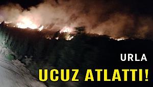 İzmir'de otluk alandaki yangın söndürüldü