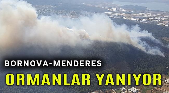 İzmir'in ormanları 2 ayrı ilçede yanıyor!