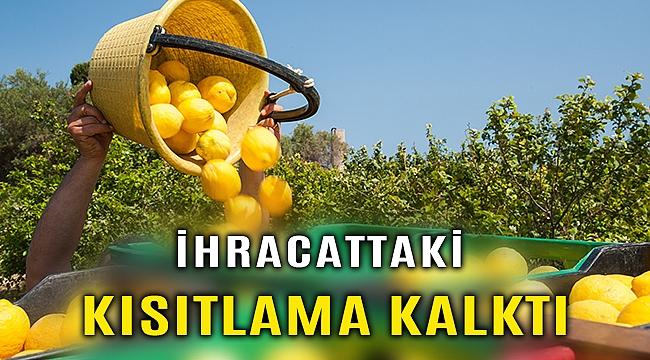 Limon ihracatındaki kısıtlama kaldırıldı