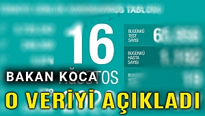 Türkiye'de halen koronavirüs tedavisi gören hasta sayısı açıklandı