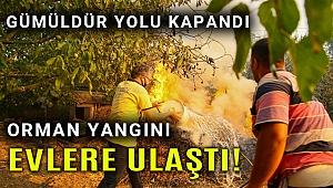 Yangın büyüdü İzmir - Gümüldür yolu ulaşıma kapandı