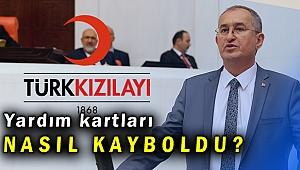 Atila Sertel: Kızılay İzmir Şubesi'nde neler oluyor?