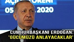 Cumhurbaşkanı Erdoğan: 'Gücümüzü anlayacaklar'