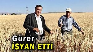 """Gürer: """"Yerli çiftçi iktidarın  gözünde yok"""""""