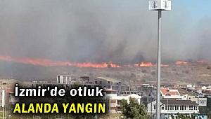 İzmir'de otluk alanda yangın
