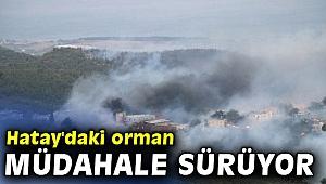 Hatay'daki orman yangınına karadan müdahale sürüyor