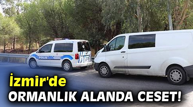 İzmir'de ormanlık alanda ceset!