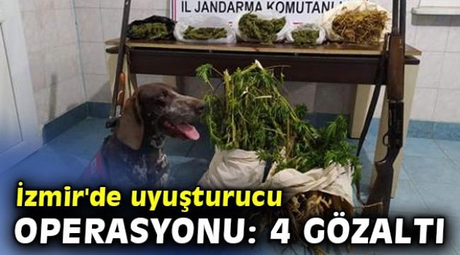 İzmir'de uyuşturucu operasyonu: 4 gözaltı