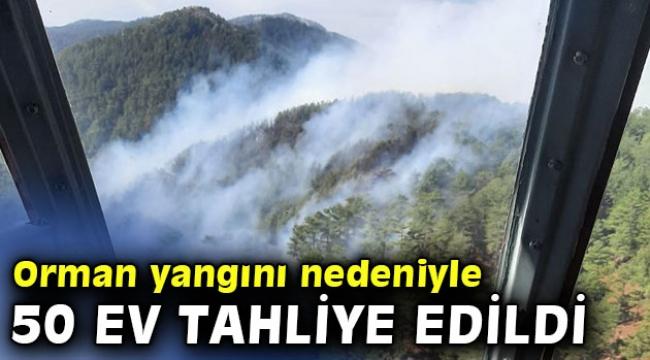 Orman yangını nedeniyle 50 ev tahliye edildi