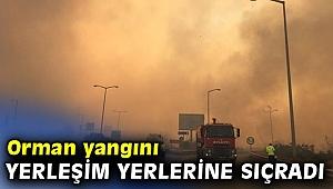 Orman yangını yerleşim yerlerine sıçradı