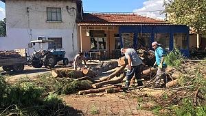 Yağış sonrası Bergama'da çalışma başlatıldı