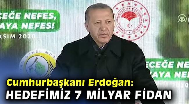 Cumhurbaşkanı Erdoğan: Hedefimiz 7 milyar fidan