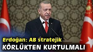 Erdoğan: AB stratejik körlükten bir an önce kurtulmalı
