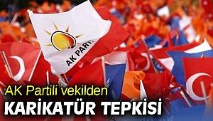 AK Partili vekilden karikatür tepkisi