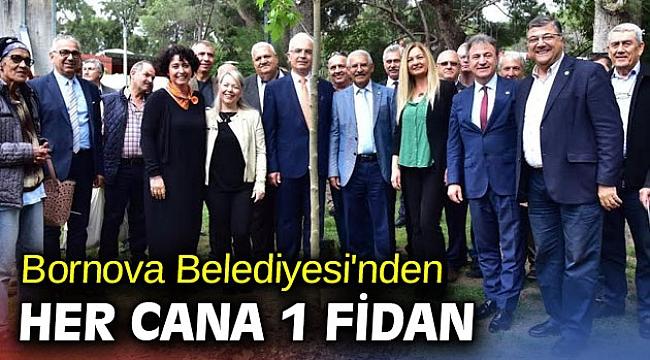Bornova'da her cana 1 fidan