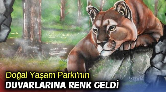 İzmir Büyükşehir Belediyesi Doğal Yaşam Parkı'nın duvarlarına renk geldi