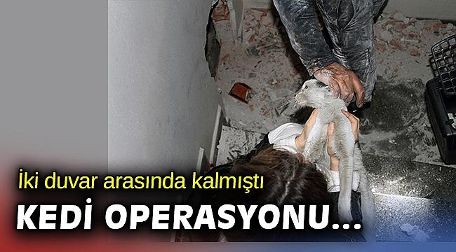 İzmir'de iki bina arasında mahsur kalan kedi duvar kırılarak kurtarıldı