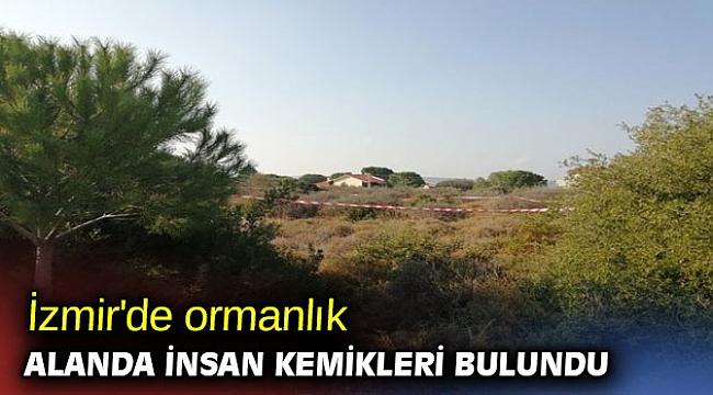 İzmir'de ormanlık alanda insan kemikleri bulundu