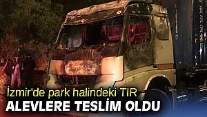İzmir'de park halindeki TIR alevlere teslim oldu