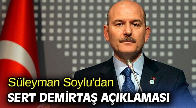Süleyman Soylu'dan sert Demirtaş açıklaması