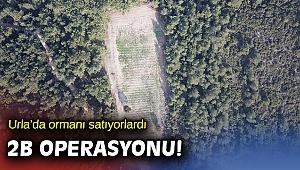 Urla'da kamu görevlileri orman alanlarını satmaya kalktılar