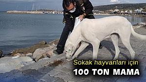 İzmir Valiliğinden sokak hayvanları için 100 ton mama
