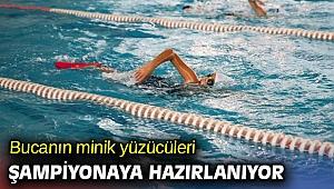 Okullar tatilde küçük yüzücüler idmanda