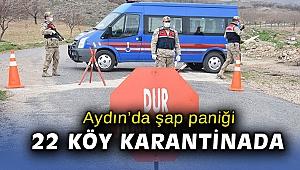Aydın'da şap hastalığı paniği... 22 köy karantinaya alındı!