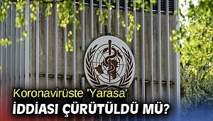 Koronavirüste 'Yarasa' iddiası çürütüldü mü?
