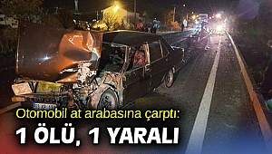 Otomobil at arabasına çarptı: 1 ölü, 1 yaralı