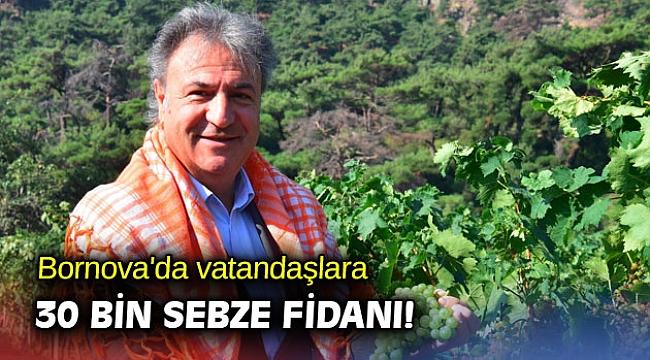 Bornova'da vatandaşlara 30 bin sebze fidanı!