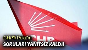 CHP'li Polat'ın soruları yanıtsız kaldı!
