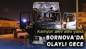 İzmir'de çıkan yangında bir kamyon kullanılamaz hale geldi