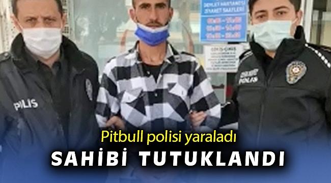 Manisa'da pitbull cinsi köpeğin saldırısına uğrayan 2 polis yaralandı