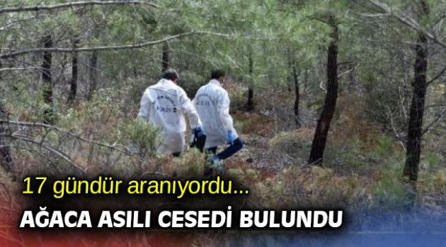 17 gündür aranıyordu... Ağaca asılı cesedi bulundu