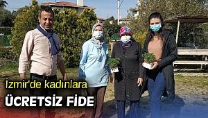 İzmir'de kadınlara ücretsiz fide