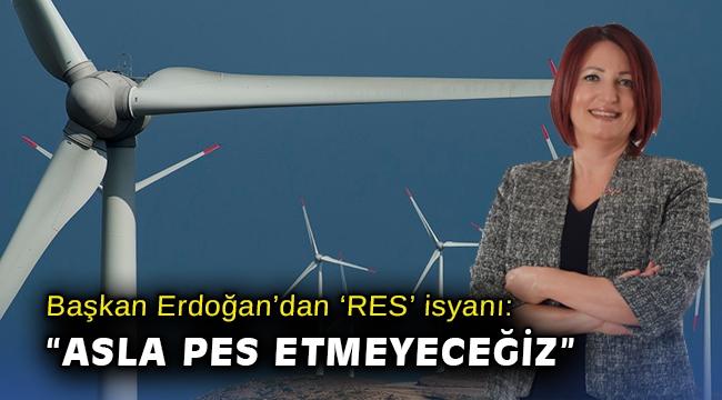 Başkan Erdoğan'dan 'RES' isyanı:
