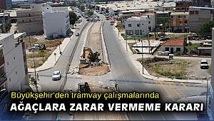 Büyükşehir'den tramvay çalışmalarında ağaçlara zarar vermeme kararı