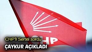 CHP'li Sertel sordu ÇAYKUR açıkladı